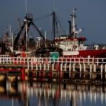 SESSF Trawlers - Eden NSW
