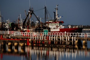 SESSF Trawlers in Eden NSW